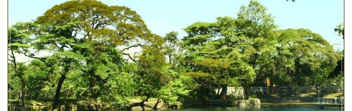 Lake Ronggojalu