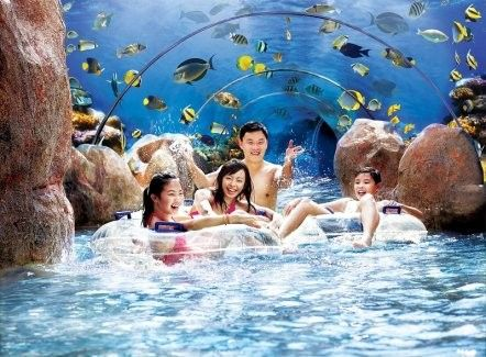harga tiket Adventure Cove Waterpark Admission with One-way Transfer