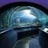 Aquaria KLCC Admission Ticket