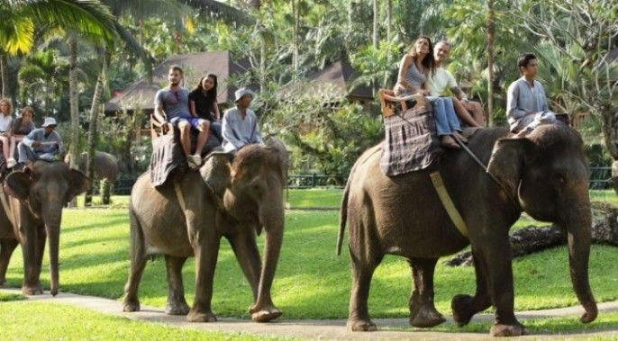 harga tiket Bali Elephant Safari Ride (E)