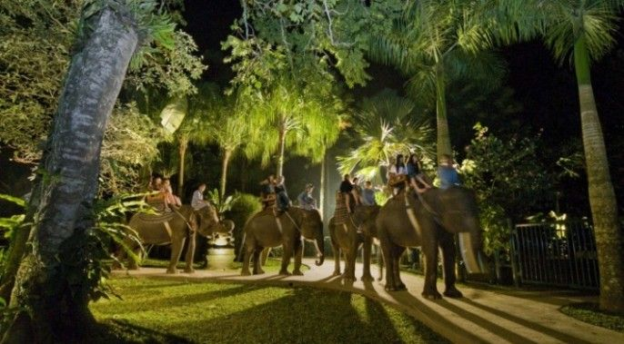 harga tiket Bali Elephant Safari Under The Stars (NSR)