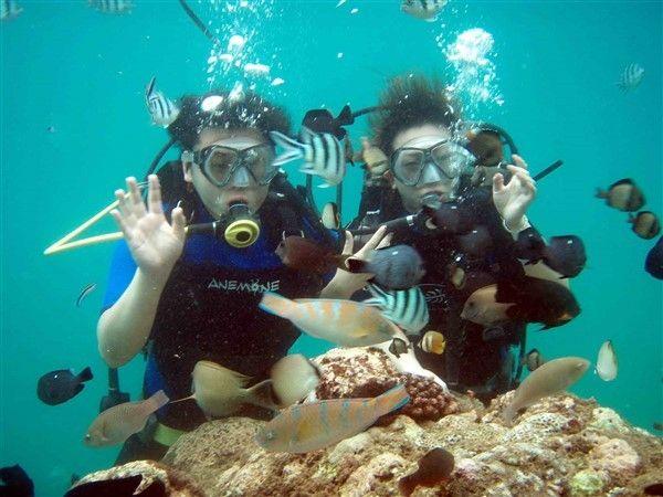 Bali Marine Fun - Benoa