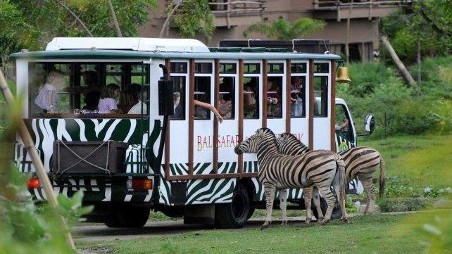 Bali Safari and Marine Park E-Voucher