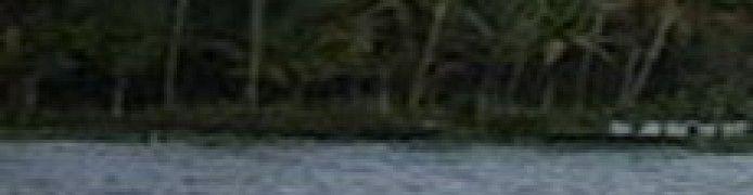 Danau Tamalam