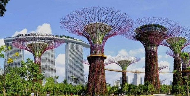 Gardens by the Bay E-ticket (Flower Dome + Cloud Forest)