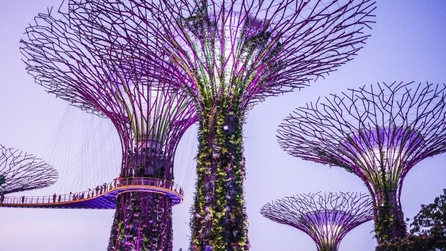 Gardens by the Bay E-ticket