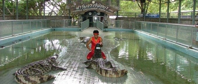harga tiket Million Years Stone Park and Pattaya Crocodile Farm Ticket