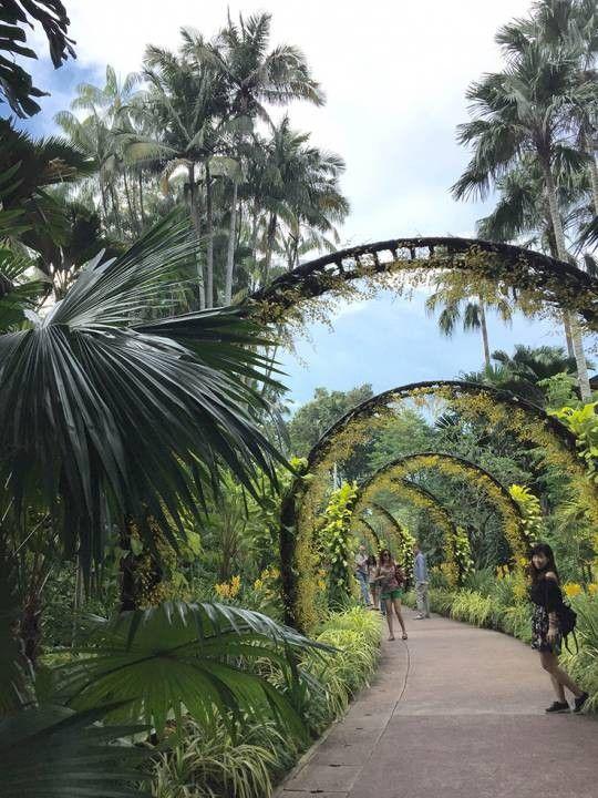 National Orchid Garden E-ticket