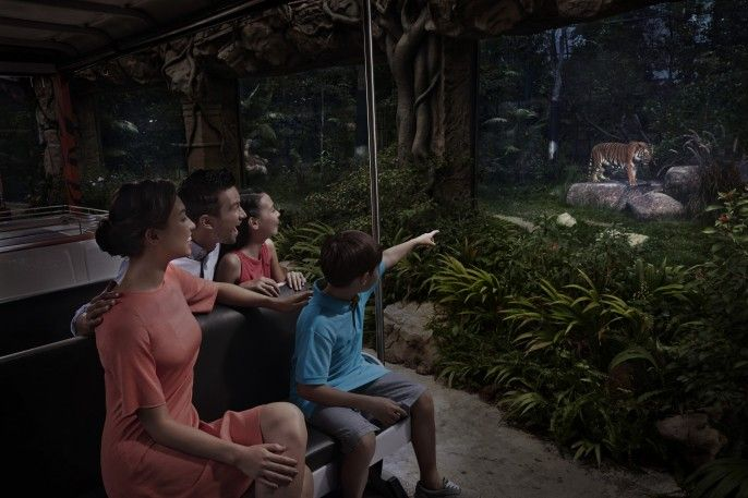 harga tiket Night Safari Fixed date Admission with English Tram Ride