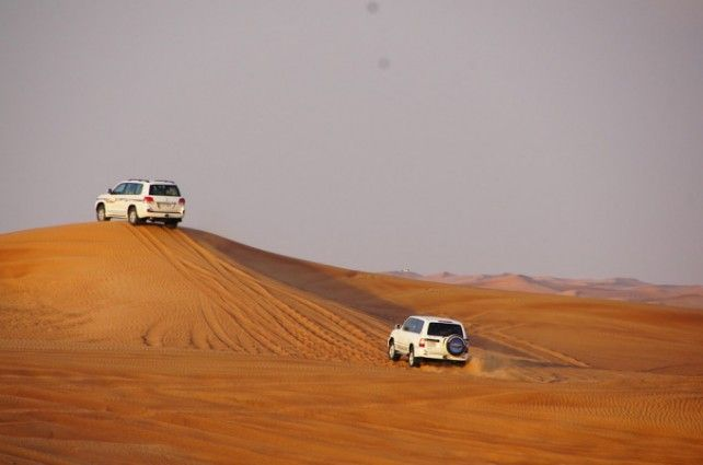 Overnight Desert Safari with Shared Transfers and Dinner