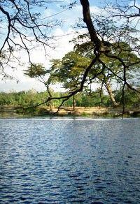Danau Ronggojalu