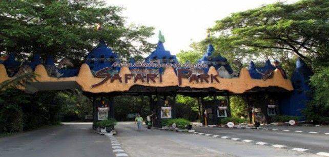 Safari World Admission Ticket