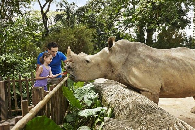 Singapore Zoo E-Ticket with Unlimited Tram Ride