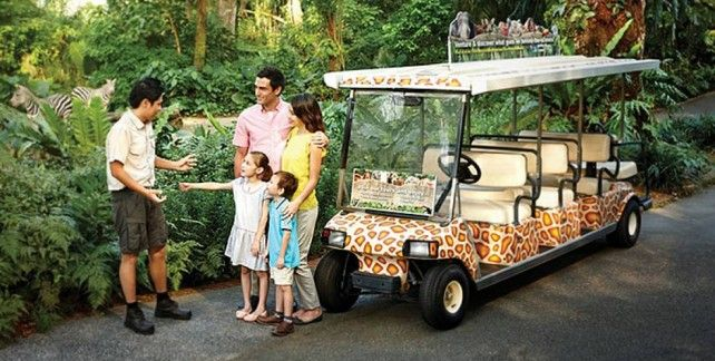 Singapore Zoo E-Tickets with Unlimited Tram Ride