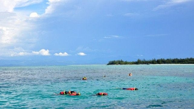 Snorkelling At Mantanani Island with Lunch