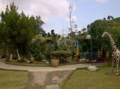 Spirit Camp dan Sahabat Alam