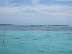 Pantai Tangonggor