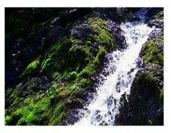 Air Terjun Tangse
