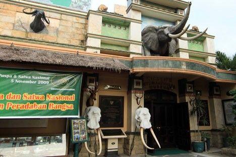 Rahmat International Wildlife Museum & Gallery